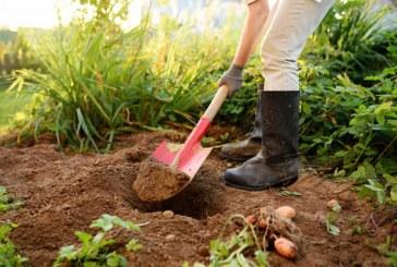Con capacitaciones ambientales la CVC busca la reinserción de jóvenes infractores