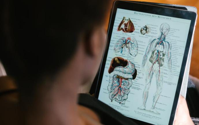 Hoy es el Día Internacional de la enfermedad de Gaucher, ¿sabes por qué se celebra?