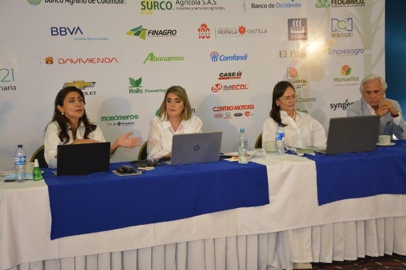 Productores de caña piden garantías para seguir trabajando en el campo - Noticias de Colombia