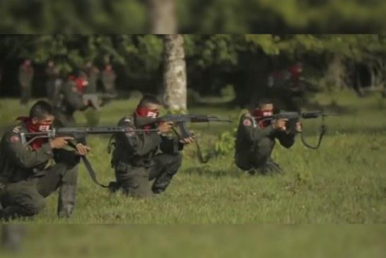 Violencia en Colombia por parte del ELN aumentó en últimas seis semanas, según estudio