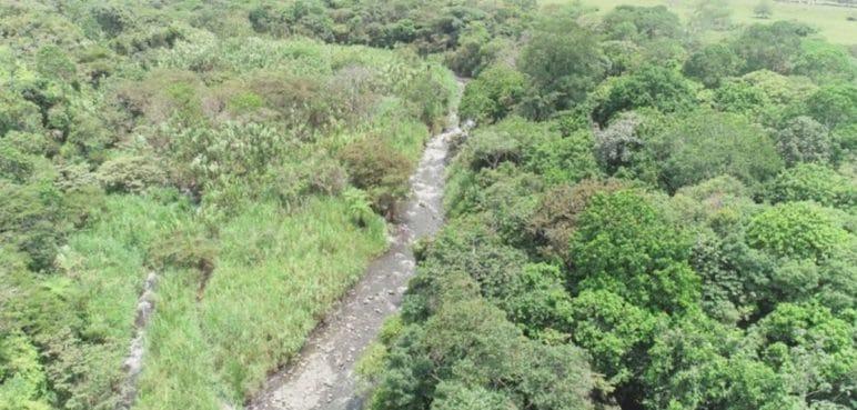 Funcionarios caleños apoyan el Parque Ambiental Corazón de Pance