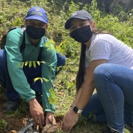 Día del Árbol:  En Cali se sembraron más de 3.500 ejemplares en la cuenca del río Cauca
